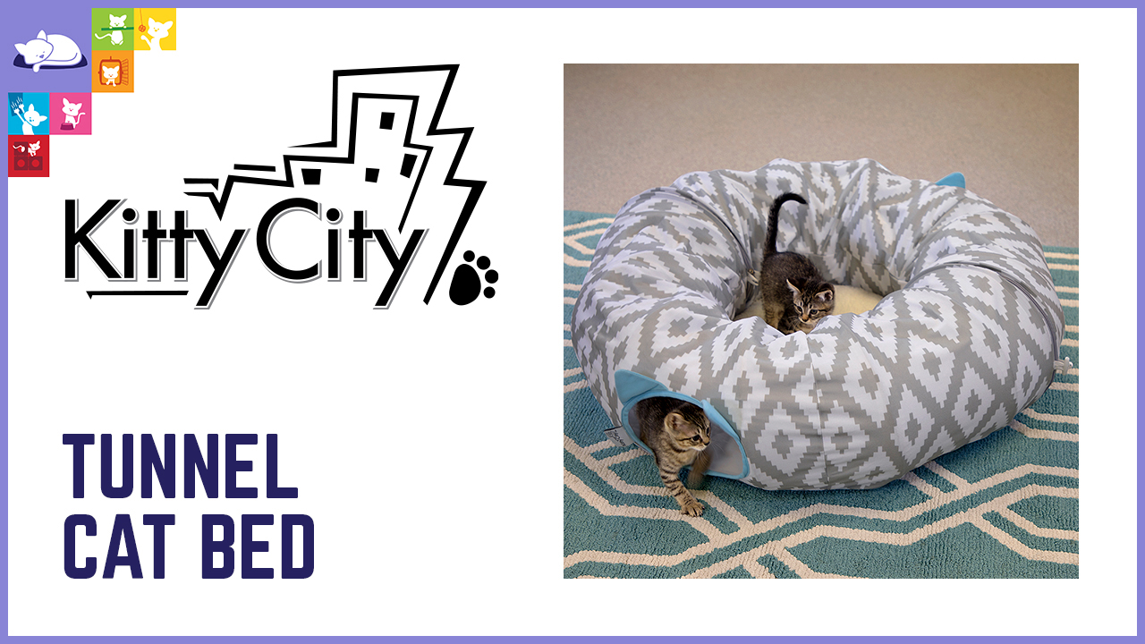 Tunnel Cat Bed Video